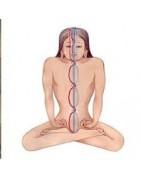 La meditación ayuda a calmar la mente